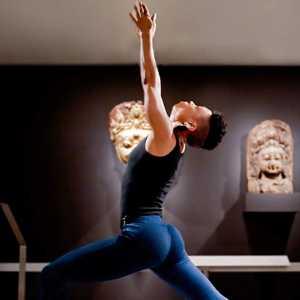 Yoga Connections Tour