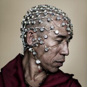 Brainwave: Perception